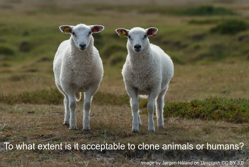 IB Biology: Introduction to Cloning.