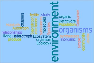 IB Biology: Ecological terms.