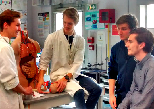 IB Biology: Cardiology Role play