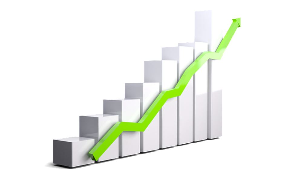 IB Business Management: Glossary: Growth and evolution