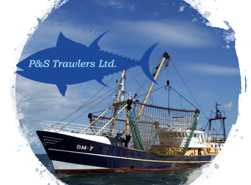 IB Business Management: May 2020 (P&S Trawlers)
