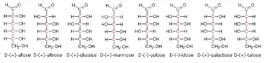IB Chemistry: Carbohydrates