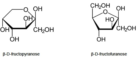 IB Chemistry: Stereochemistry in biomolecules questions