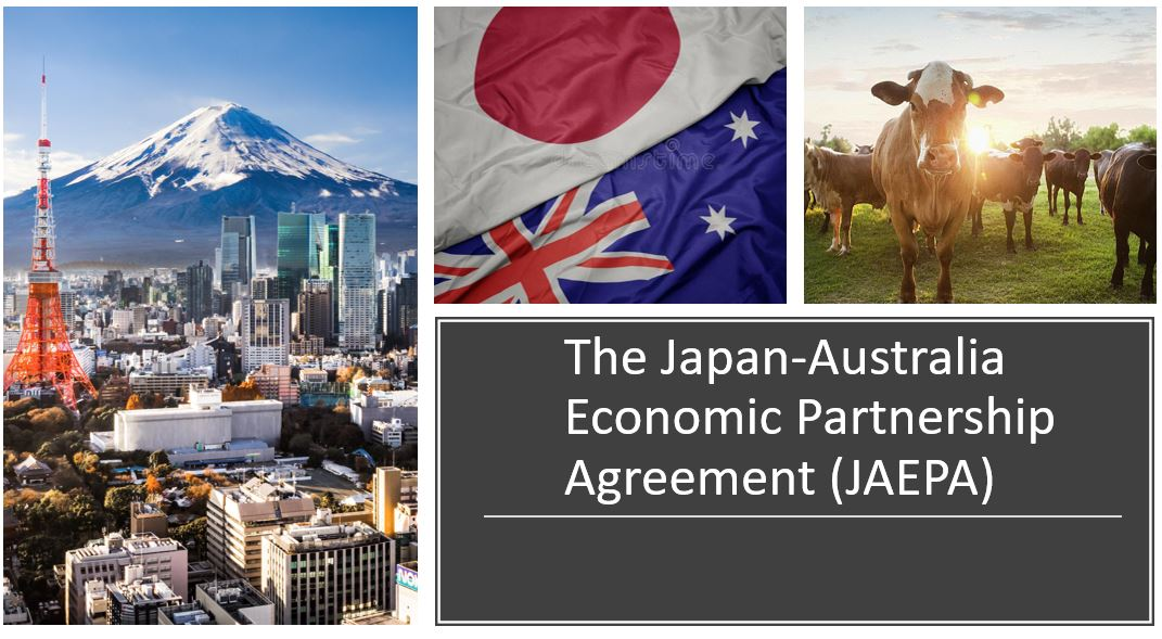 IB Economics: Paper 3 question: Trade agreements, tariffs, balance of payments current accounts and supply policies