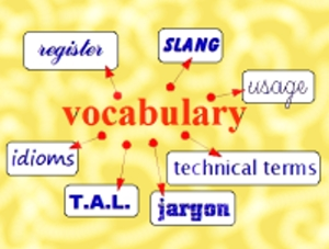 IB English B: Vocabulary & concepts