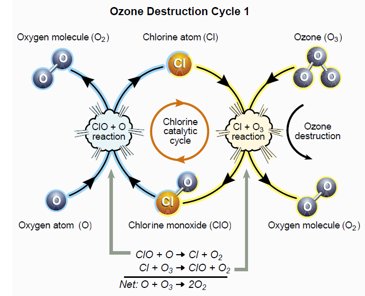 IB Environmental Systems & Societies: Review Topic 6 Stratospheric Ozone