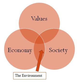 IB Environmental Systems & Societies: 1.2 What is a System? The Basics