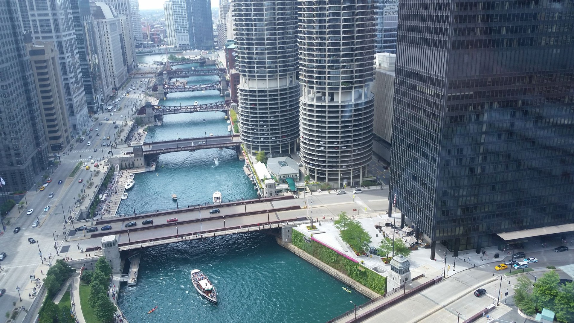 IB Environmental Systems & Societies: The Chicago River: Life in the Anthropocene
