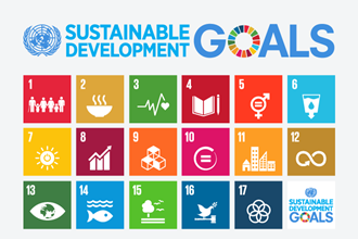 IB Geography: The UN Sustainable Development Goals