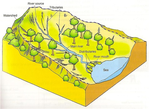 IB Geography: Flooding and Hydrographs