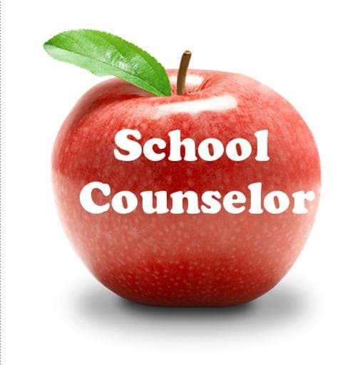 IB School Leadership: The role of the counselor